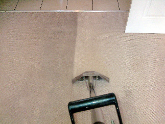 Carpet Cleaning Sample